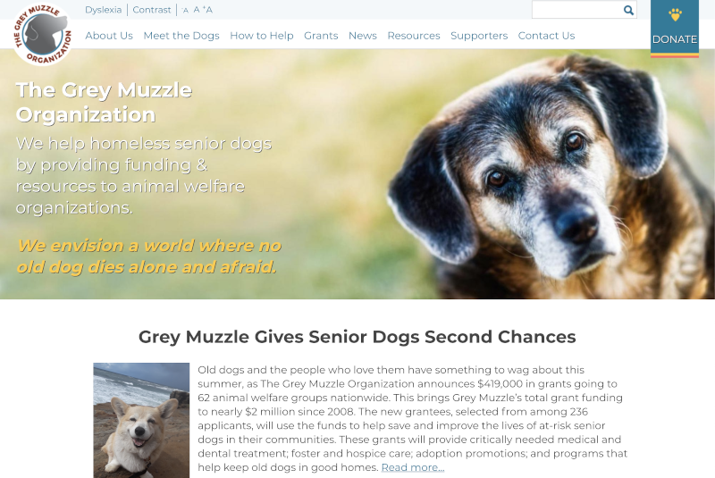 Grey Muzzle Organization – a Drupal Accessibility Challenge